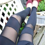 quần legging ql75
