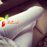 quần legging ql186